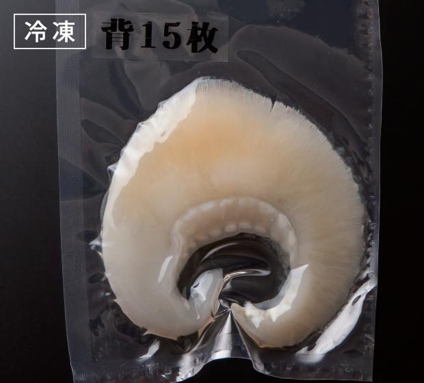 岡物冷凍排翅 背ビレ